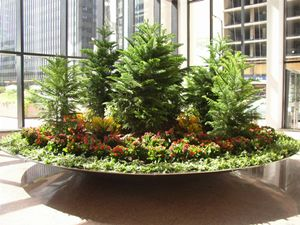 Commercial Plant Displays   Google Search