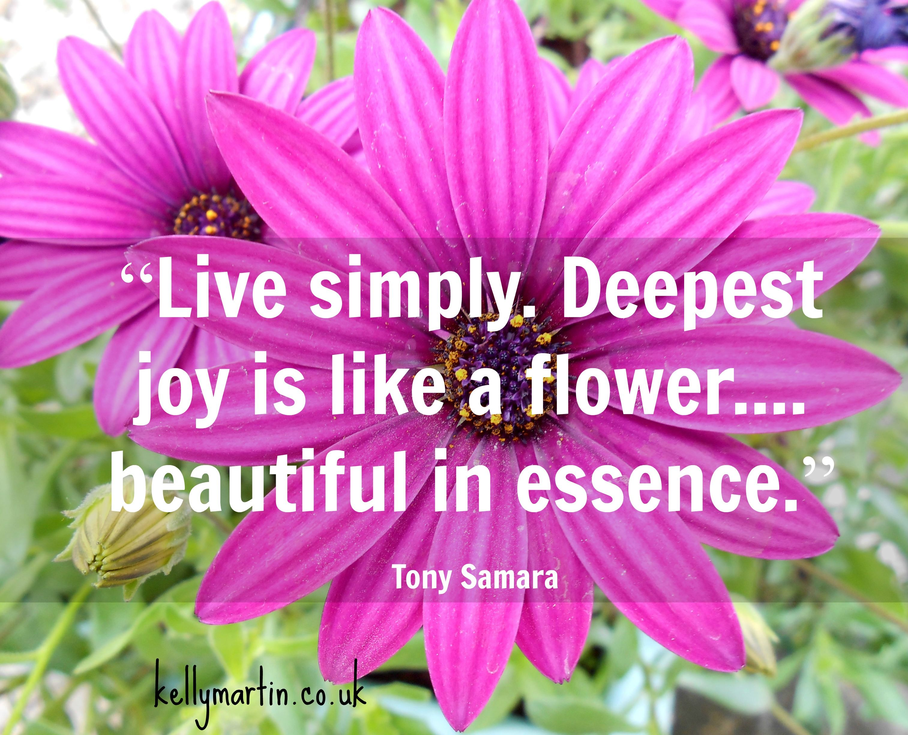 Live Simply Deepest Joy Is Like A Flowerautiful In Essence