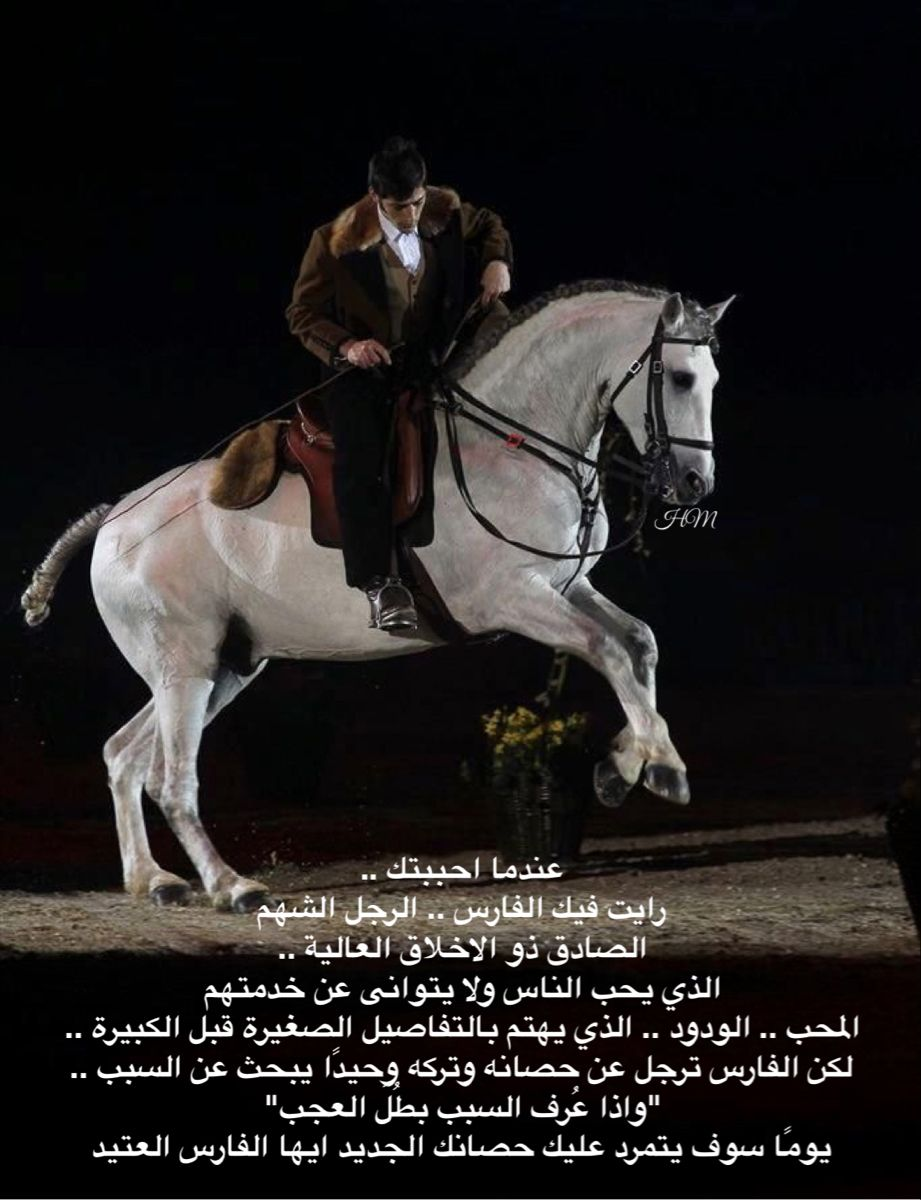 Pin By H On خواطر Words Just Words Horses Animals Words