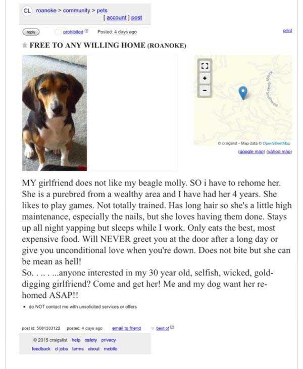 Virginia Man Tries To Rehome Dog Disliking Girlfriend On
