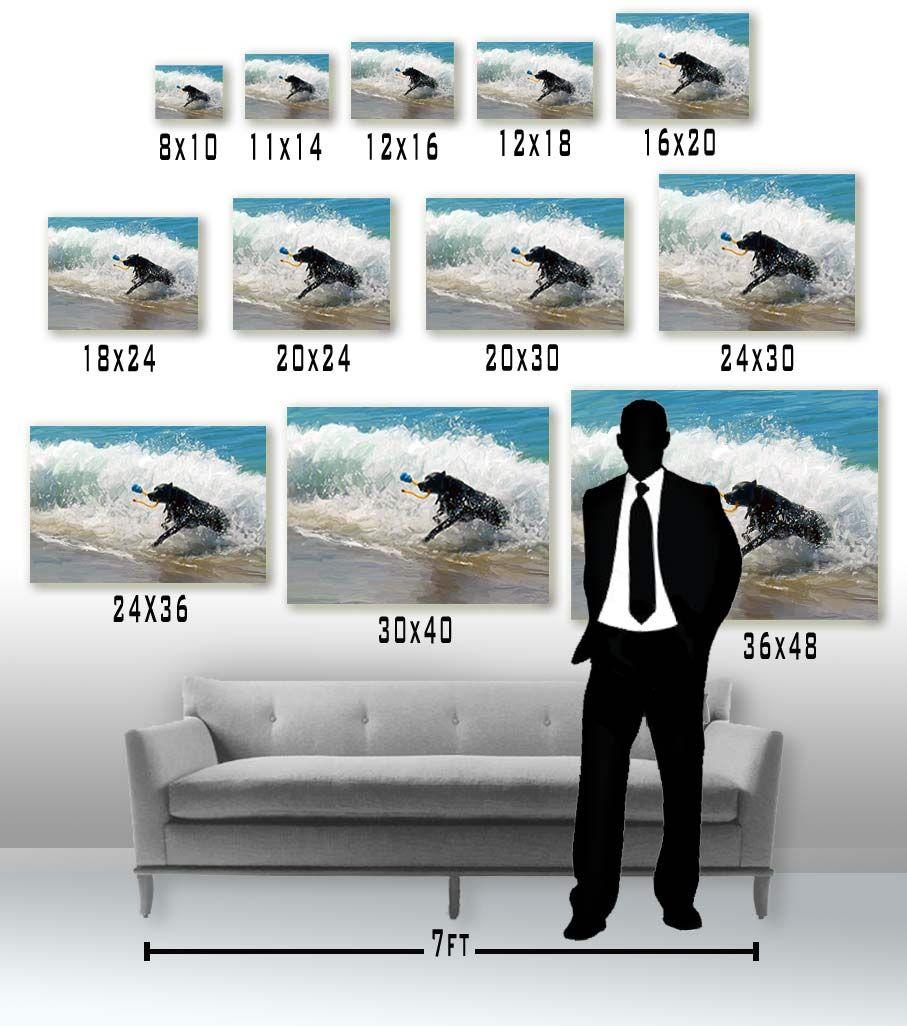 11x17 Poster Size Comparison
