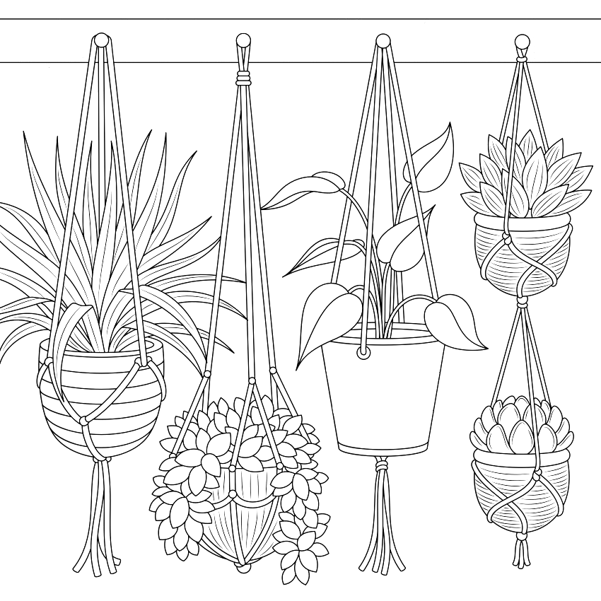 Pin By Jaime Mastrogiovanni On Desenhos Flower Drawing Line Art Drawings Coloring Pages