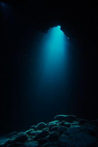 水中ステージを照らすスポットライト: な。の八丈島・座間味・パラオのダイビングフォト日記