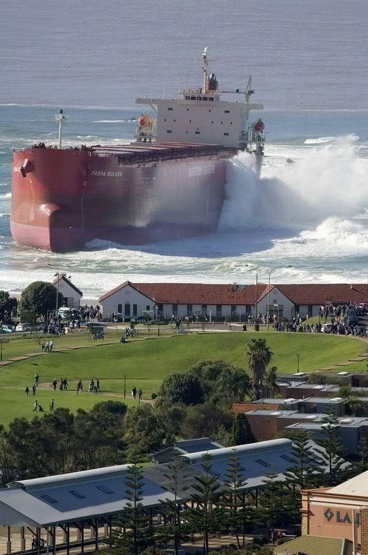 Your mind will tell you this picture is impossible. Don't listen to it.  PASHA BULKER onto the shore at Nobby's Beach.
