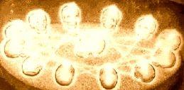 Star Gate - Enigma of the Crystal Skulls