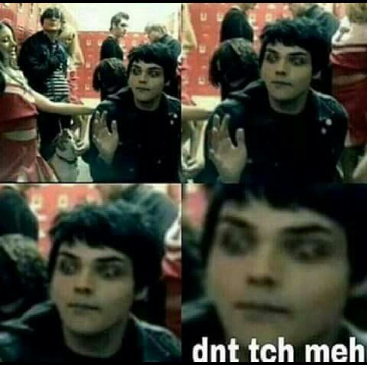 MCR and Frerard/MEMES and PICTURES | My chemical romance ...