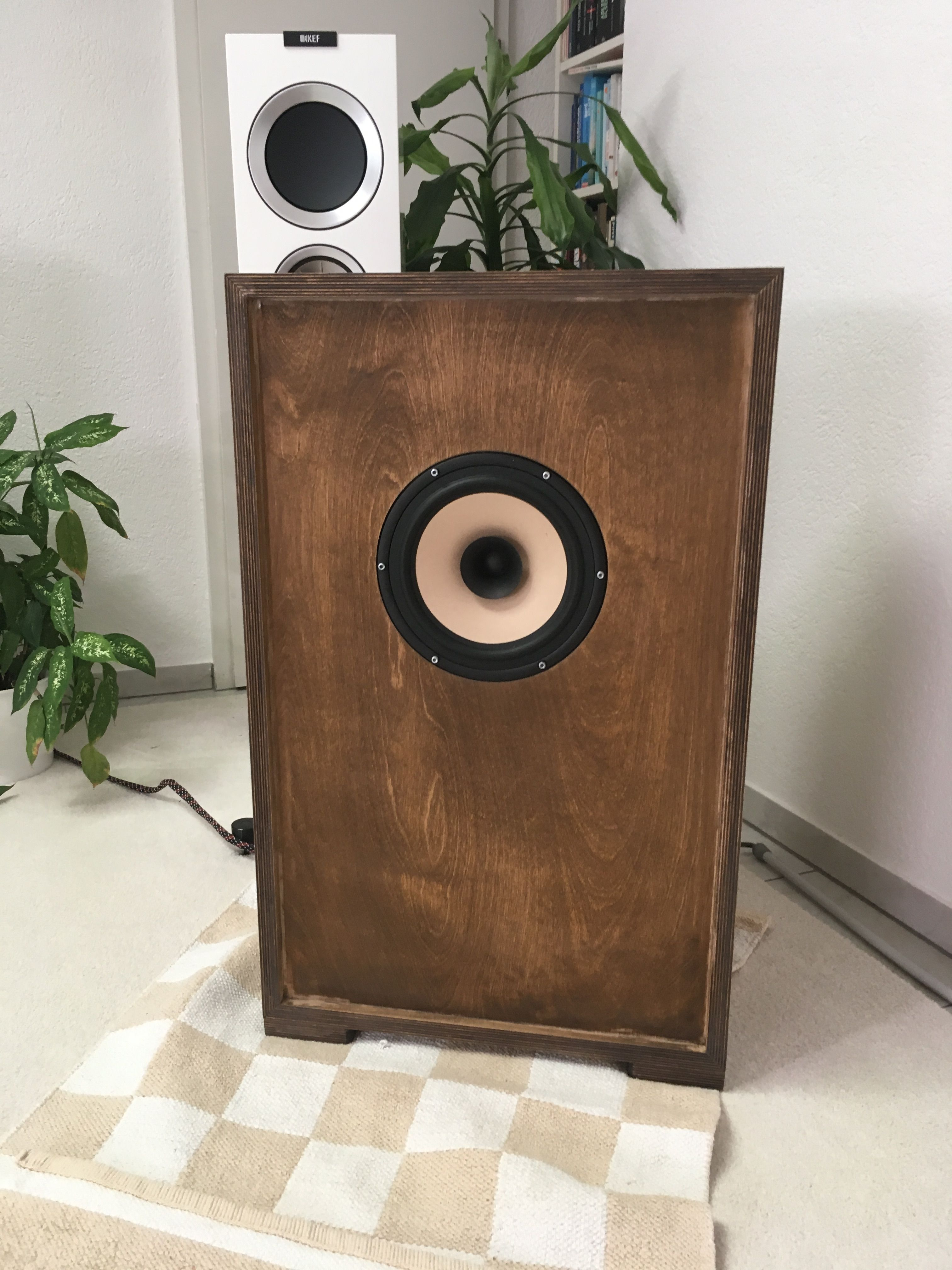 """My nearly finished """"Leagere Excotica"""" seald enclosure speaker"""