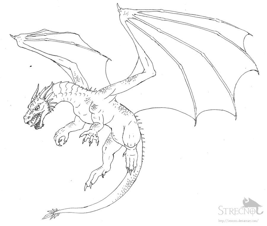 Flying Dragon Drawing Bing images Drawings Pinterest