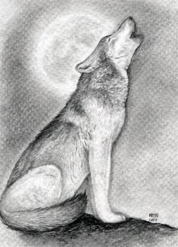 How To Draw A Howling Wolf Wolf Pinterest Draw Wolf And Wolf