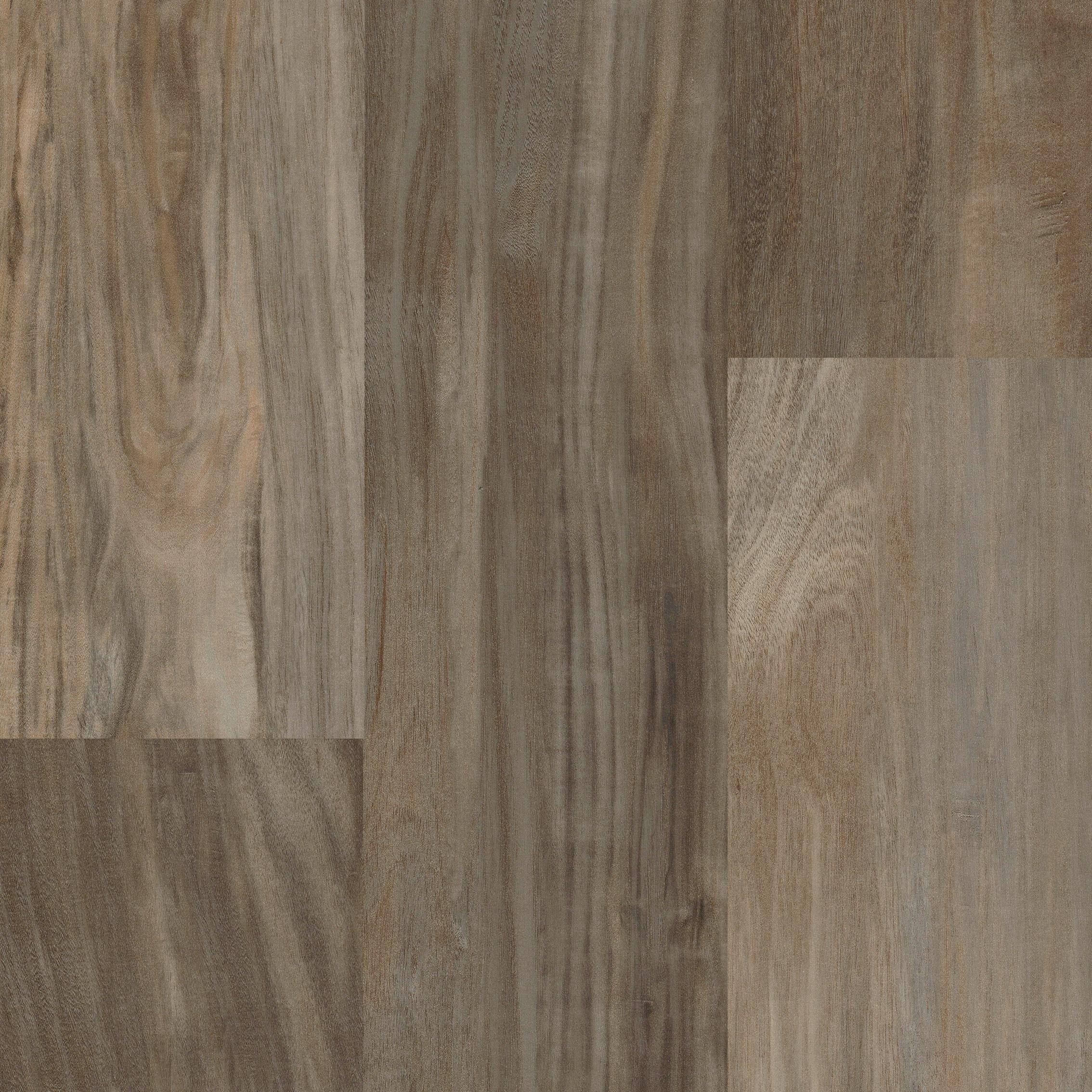 Ivc Agusta Acacia 7 56 Waterproof Luxury Vinyl Plank Flooring Luxury Vinyl Plank Flooring Vinyl Plank Flooring Luxury Vinyl Plank
