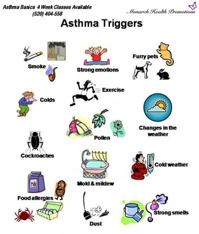 Five Allergy and Asthma Triggers: How to Avoid Them - http://day4health.com/five-allergy-and-asthma-triggers-how-to-avoid-them/