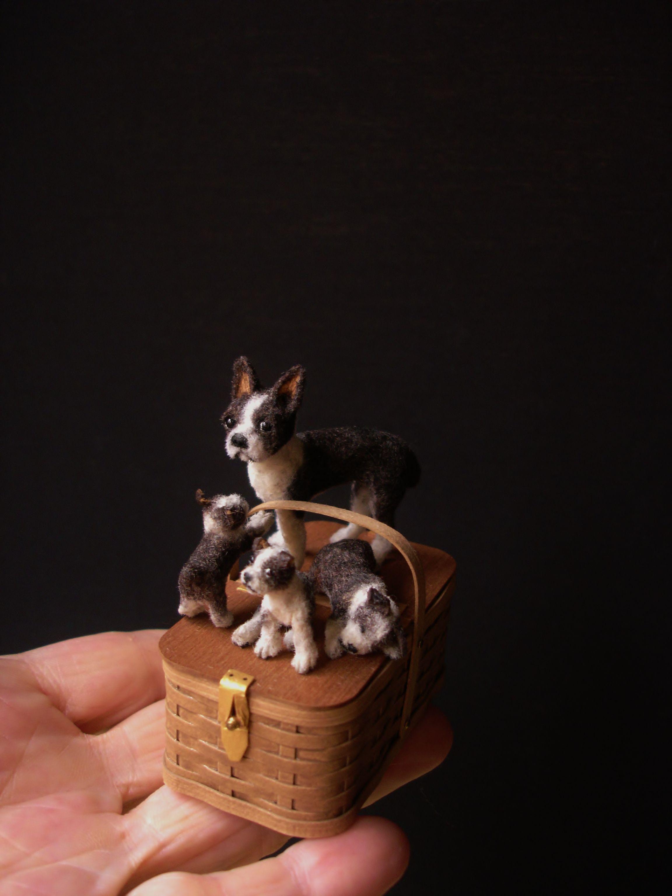 Boston Terrier 1:12 | Designer Dog Miniatures | Miniature