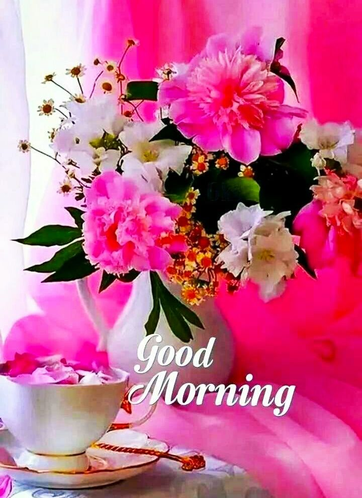 Good Morning Images For Whatsapp Free Download Hd Wallpaper Pictures Photos Of Good Morn In 2020 Good Morning Images Flowers Good Morning Flowers Good Morning Roses
