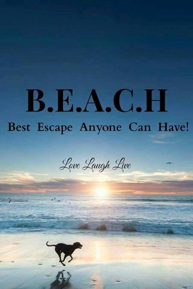 Live Laugh Love Beach Quotes Ocean Quotes Beach