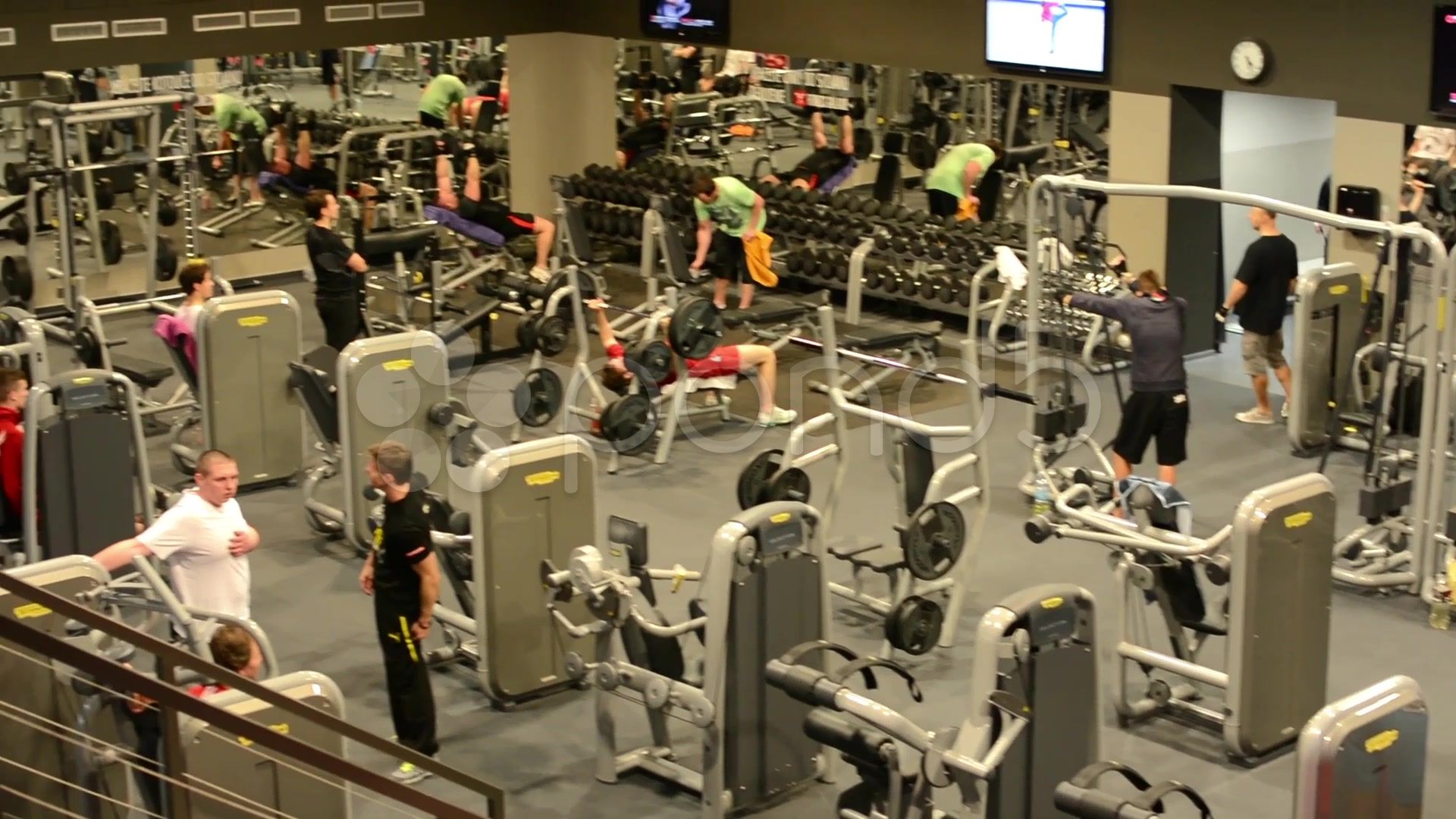 People Train In Fitness Gym Workout Stock Footage Fitness Train People Gym Gym Workout Fitness