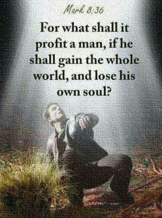 What does it profit