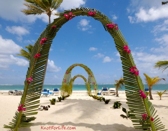 Beach Wedding Arch Ideas: WEDDING ARCH PALM DECORATIONS