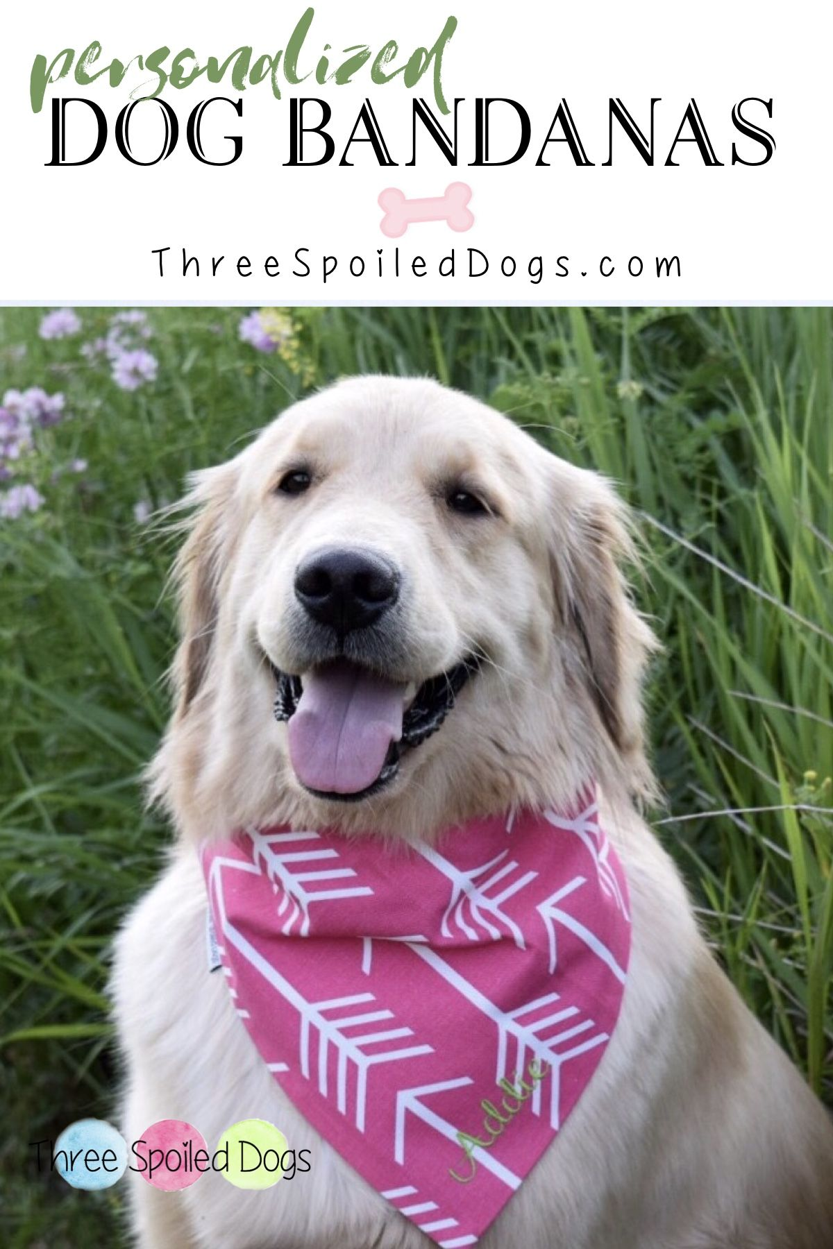 Personalized Dog Bandanas For Your Precious Furbaby We Are A Dog