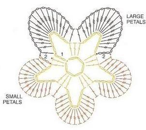 Pansy chart