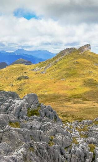 Region Nelson / Neuseeland: Die besten Tipps (Foto: Getty) http://www.travelbook.de/reiseziele/nelson-1325/