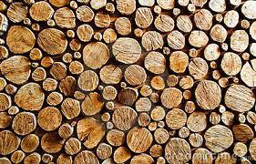 Znalezione obrazy dla zapytania wood