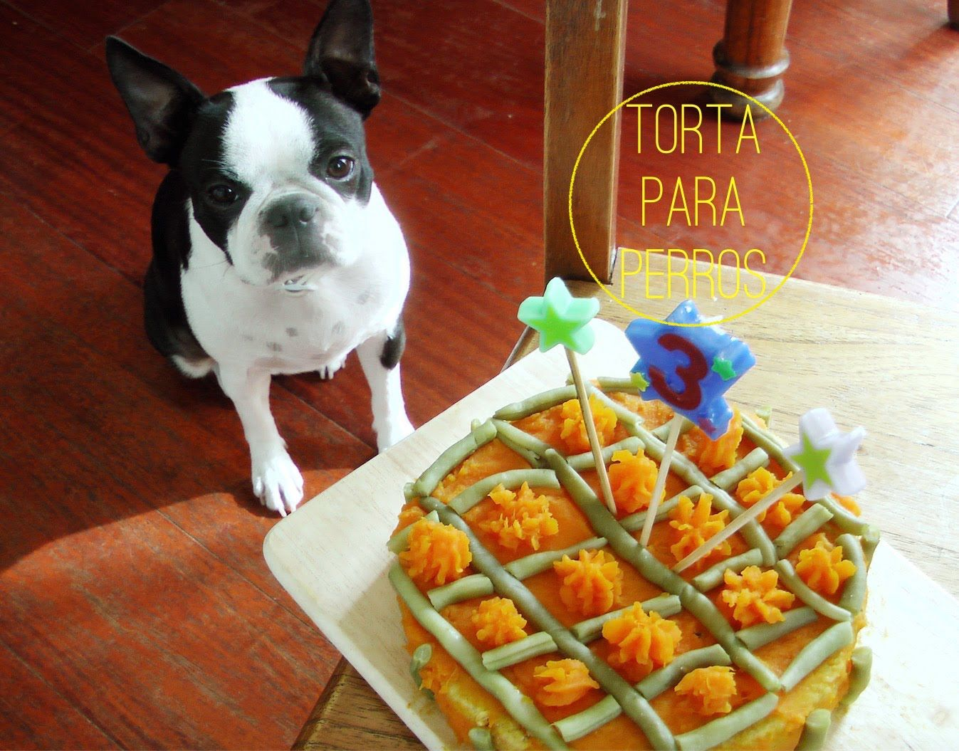 Cómo Hacer Torta De Cumpleaños Para Perro Receta Deliciosa