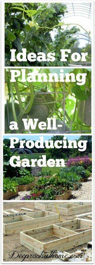 dfbad4bea132b2b1b65be5dc6b6a505f - Gardening All In One For Dummies Pdf