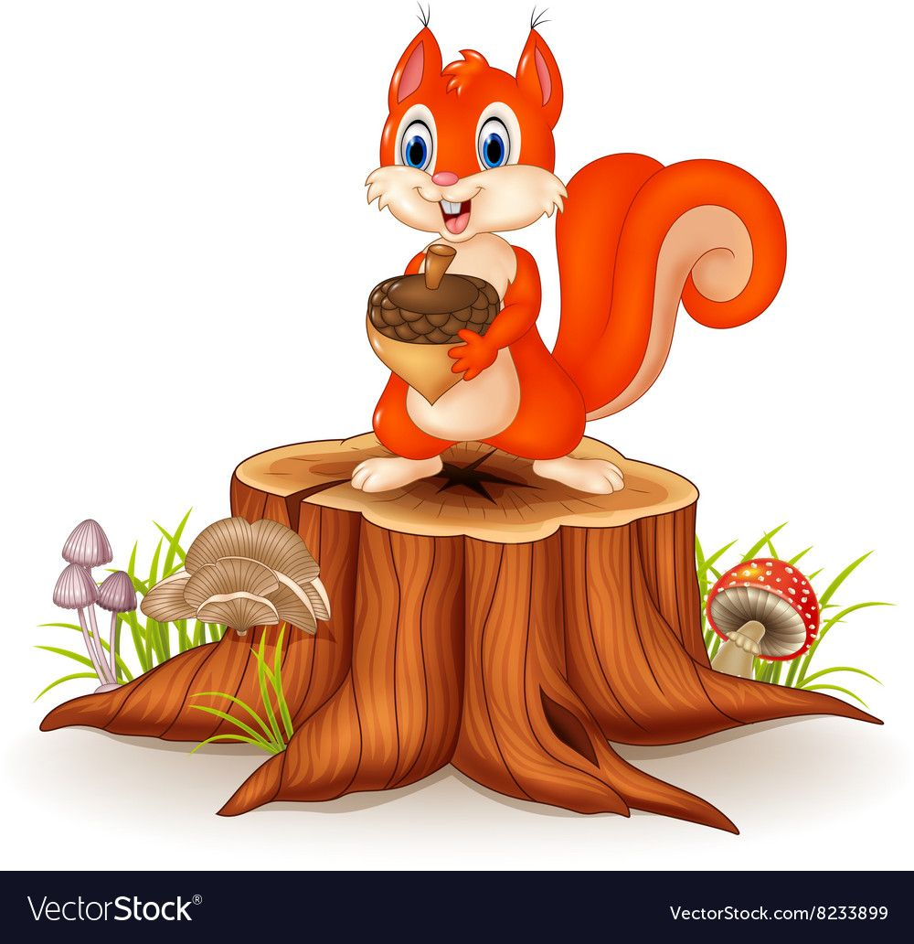 Illustration Of Cartoon Squirrel Holding Pinecone On Tree Stump Download A Free Preview Or High Quality Adobe Illu Tree Drawing Squirrel Art Drawings For Kids