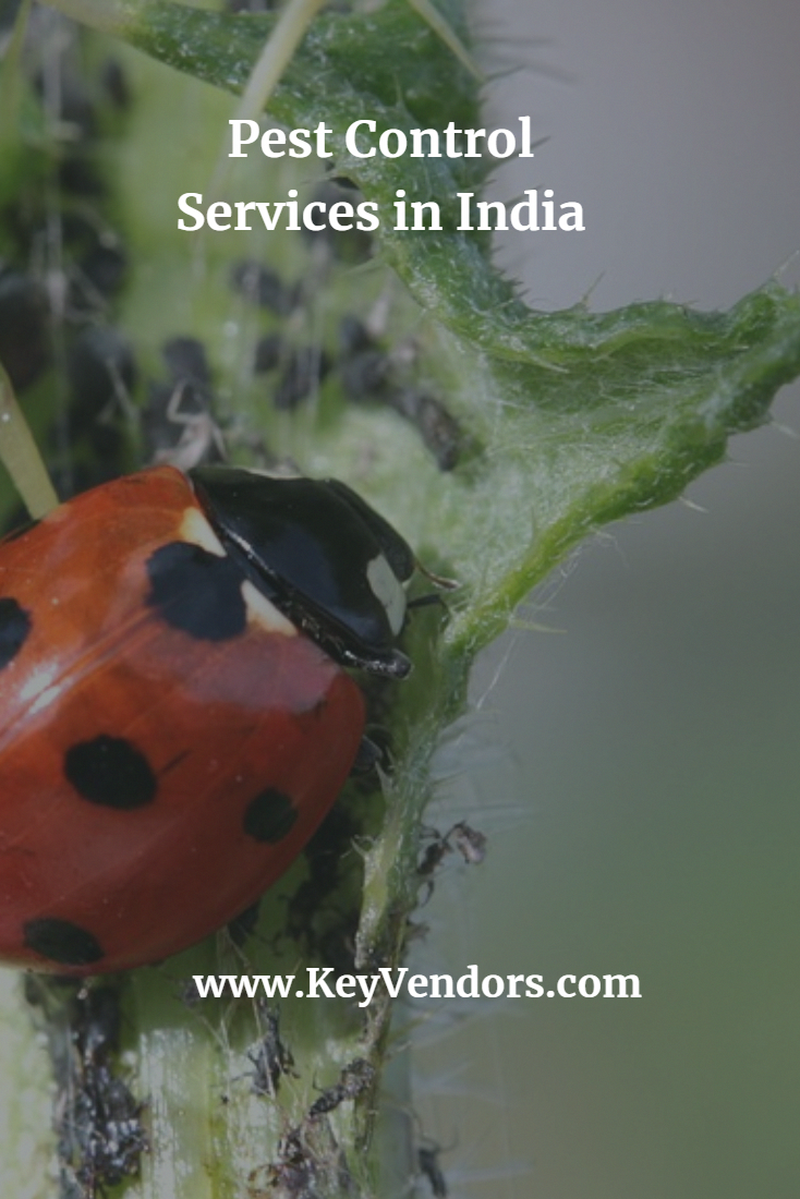List of Best Pest Control Services in India Pest Control