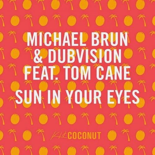 Michael Brun & Dubvision feat Tom Cane - Sun In …