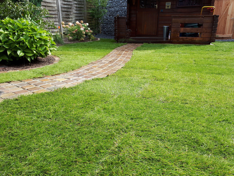 Gartenneugestaltung Inkl Natiursteinweg Neupflanzungen Usw Gartengestaltung Gartenpflege Garten