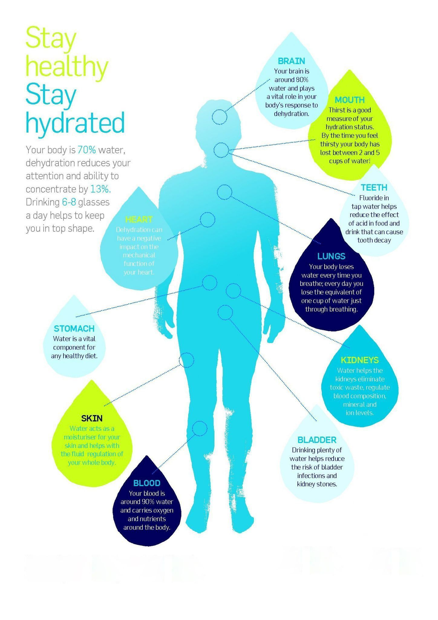 Stay Healthy Say Hydrated How To Stay Healthy How Are You Feeling Ro Water Purifier