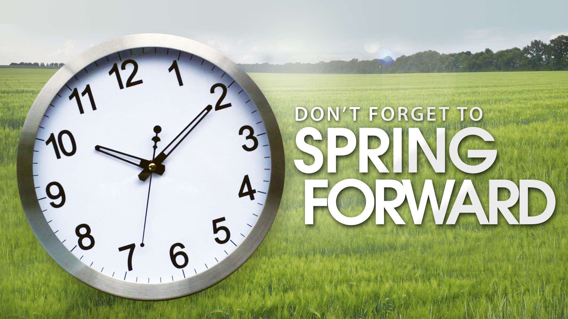 Spring Forward Meme Daylight Savings Time