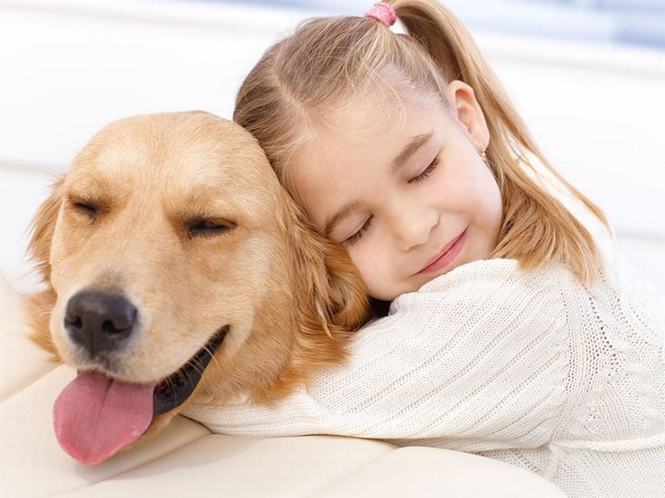 Animal health insurance is not subject to the rules and