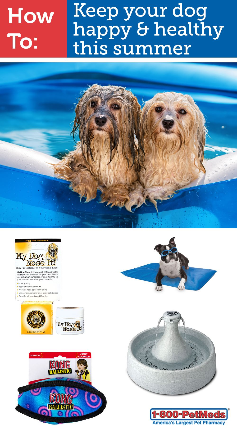 Easy Ways To Keep Your Pet Cool This Summer Your Pet Pets Summer Dog