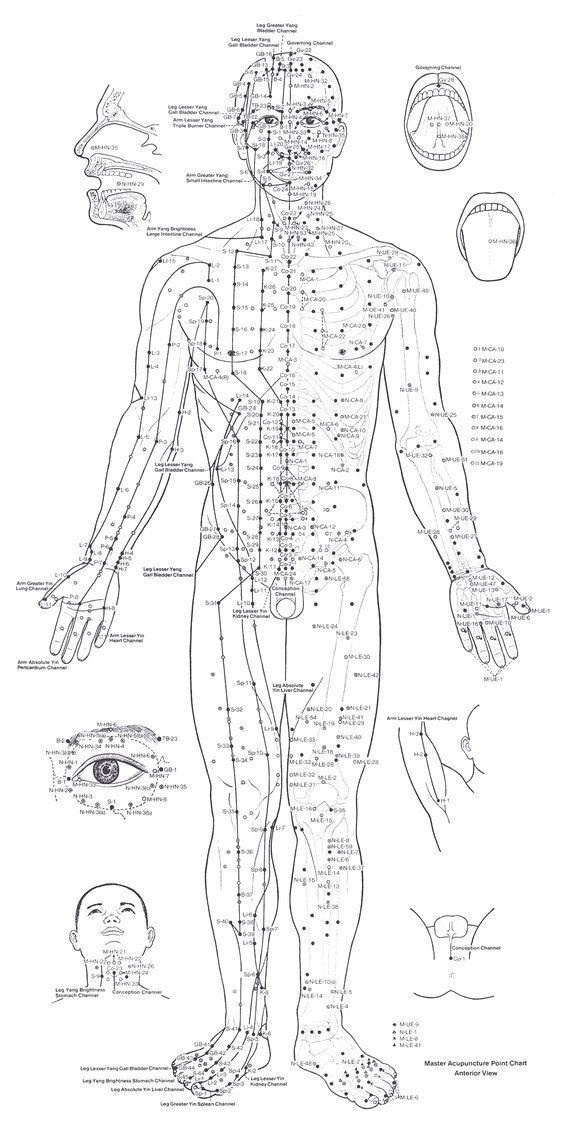 Acupuncture Chart Front Acupuncture Pinterest Acupuncture