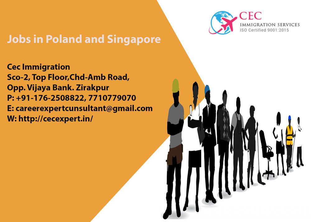 immigration #cecexpert #immigrationzirakpur #best #immigration
