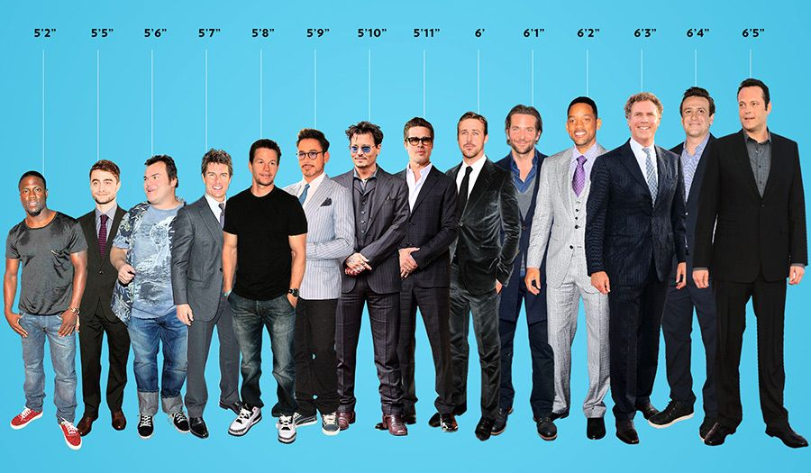 Hollywood S Leading Men Arranged In A Helpful Graphic From Shortest To Tallest Men Celebs Hollywood