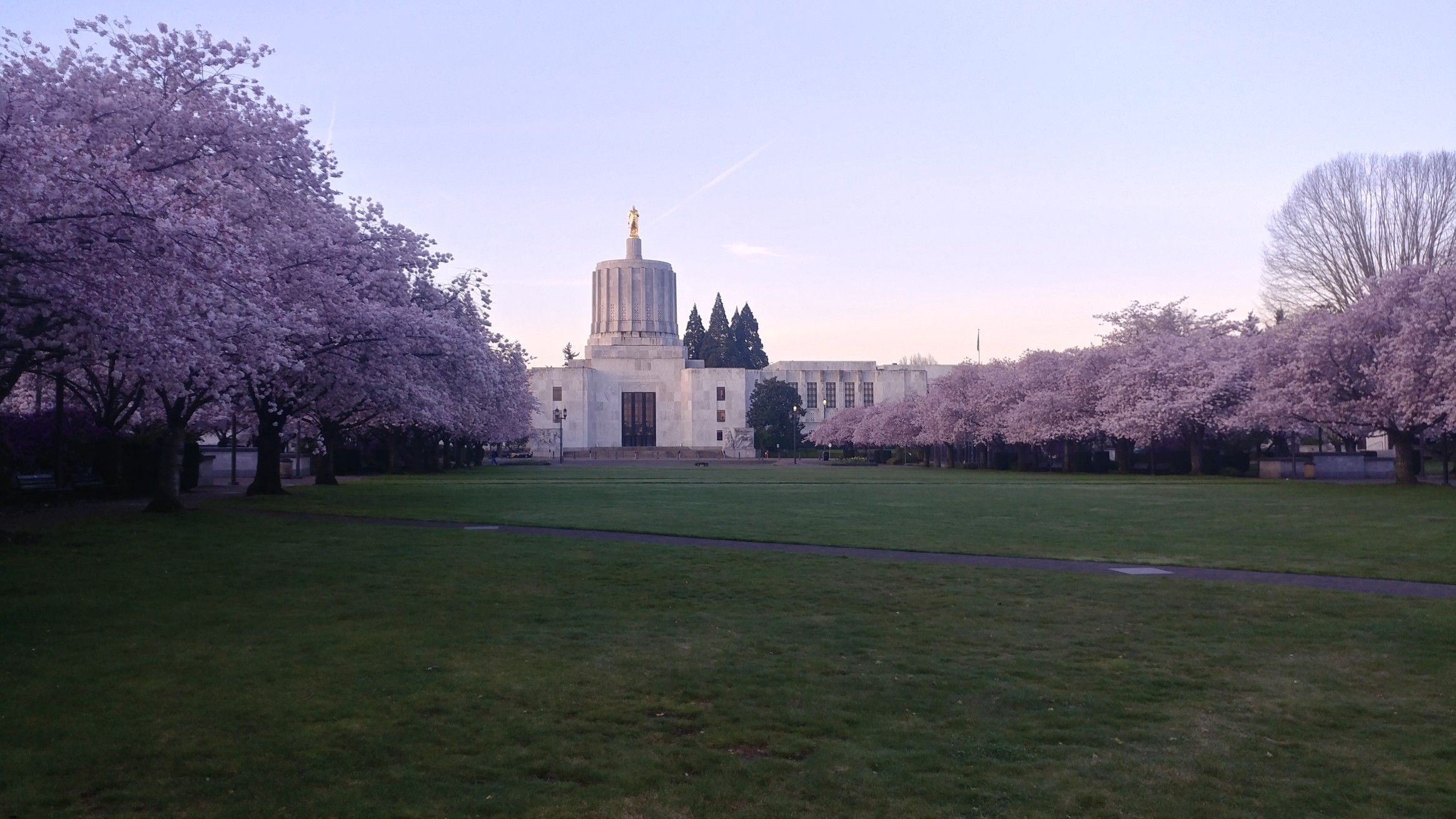 Photography Of Salem Oregon S Capital Mall And It S Grove Of Cherry Trees House Styles Mansions Salem Oregon