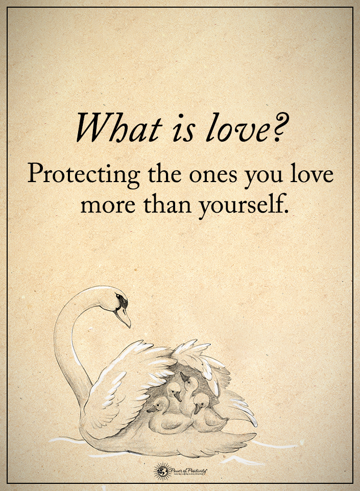 What is love? Protecting the ones you love more than yourself ...