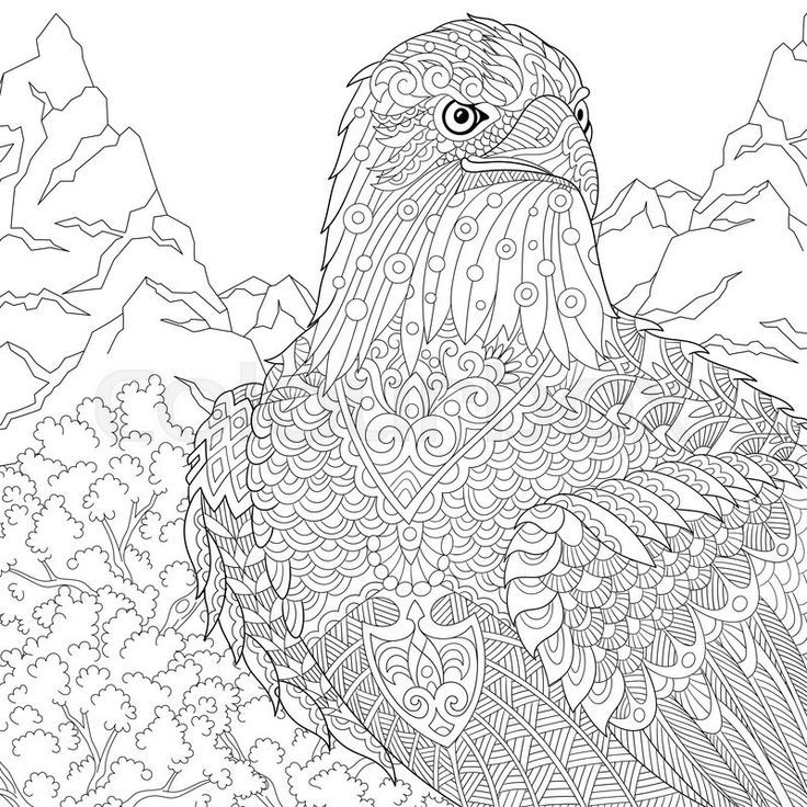 ausmalbilder mandala adler  animal coloring pages