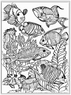 Aquarium Fish Adult Coloring Pages | coloring pages for adults ...