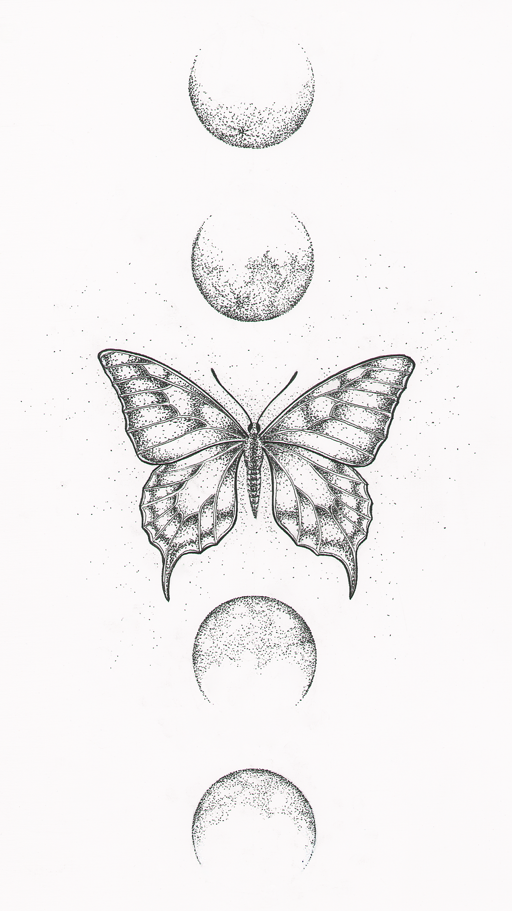 Printable Wall Art Butterfly