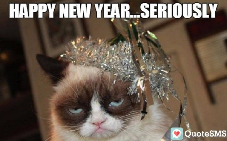 Happy New Year Wallpapers 2020 Happy New Year Meme New Year Meme Happy New Year Funny
