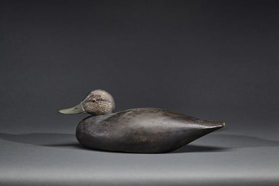 Black Duck A. Elmer Crowell (1862-1952) - Price Estimate: $600 - $900