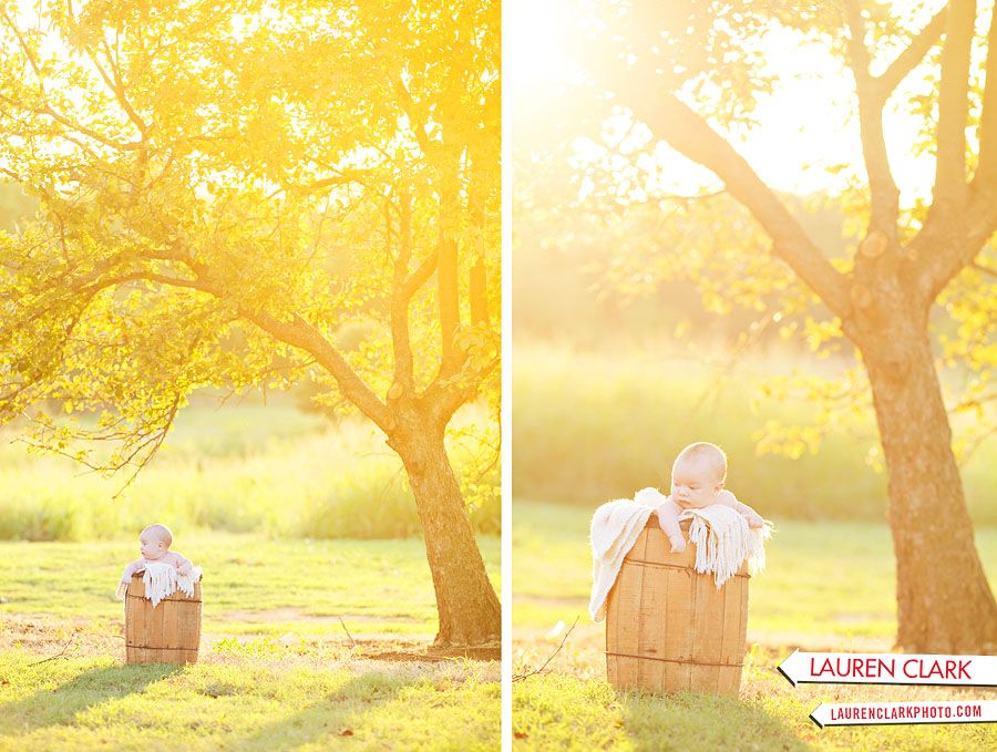 outdoor baby session