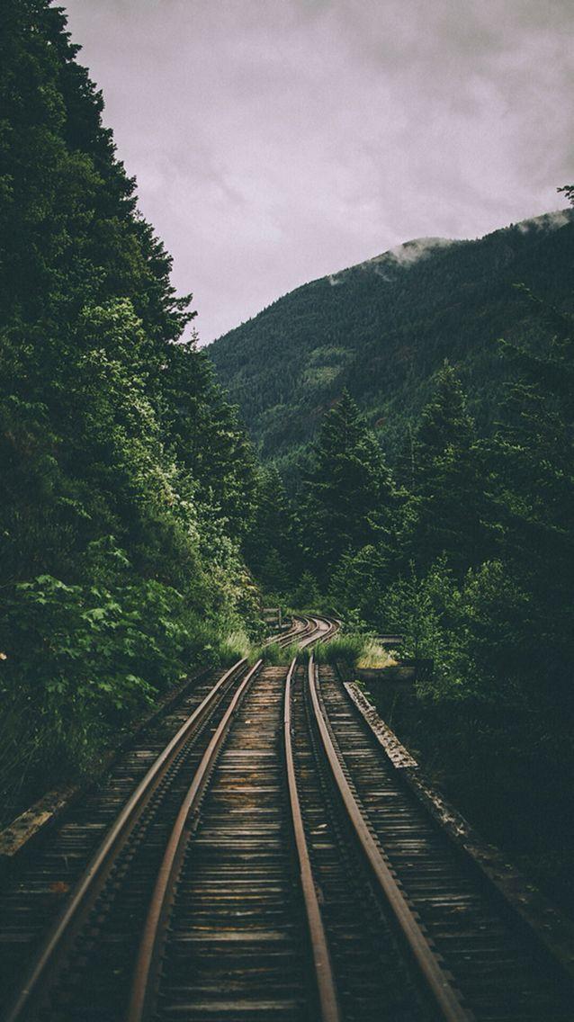 Floresta Trilho De Trem Fundo Tumblr