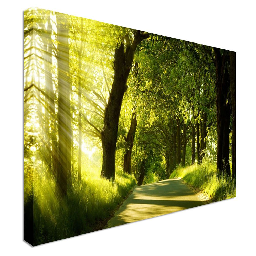 Trekking Through The Green Woods Canvas Wall Art Print Large + Any ...