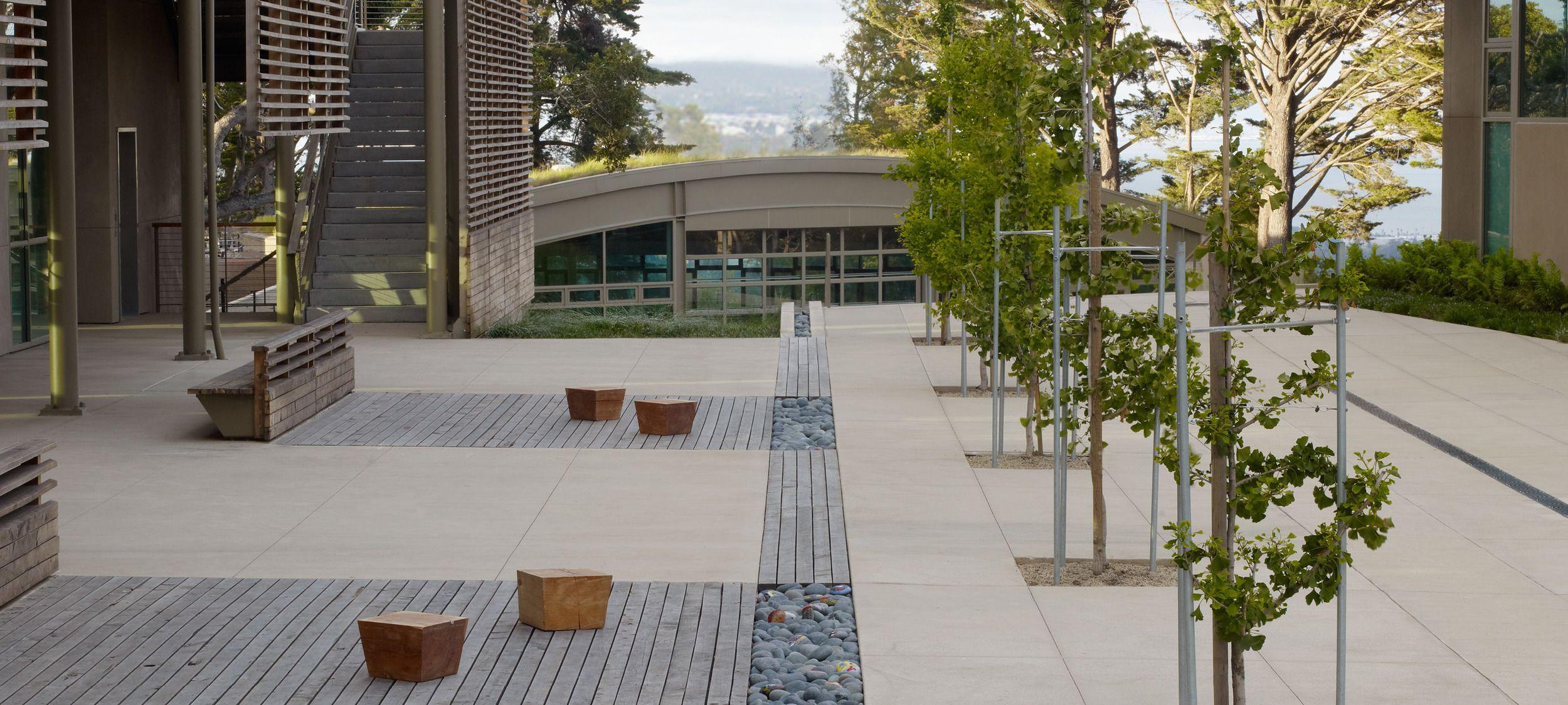 andrea cochran landscape architecture nueva school  outdoor classroom  stormwater runnel  plaza