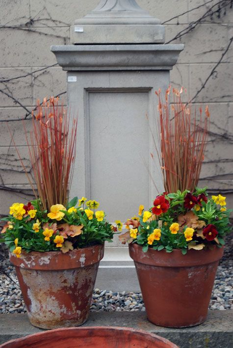 For Front Door Planters Home Ideas Pinterest Container